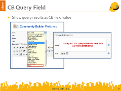 CB Query Field