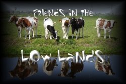Friends In The Low Lands