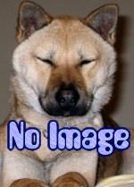 nophoto-3d01f8f73a0914af263894ea8cd382bb.jpg